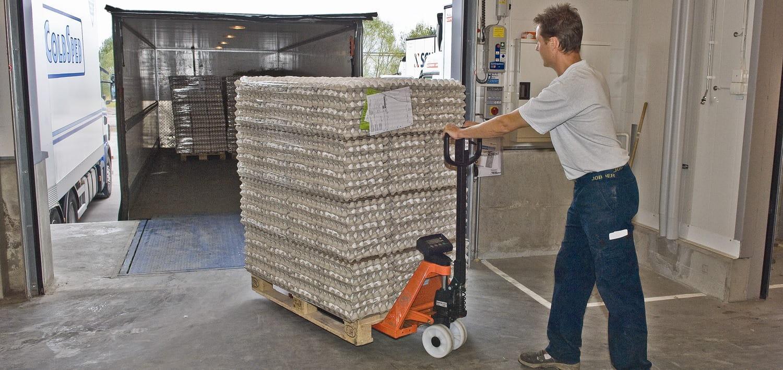 BT Hand Pallet Trucks