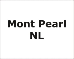 Mont Pearl NL Forklift Leasing